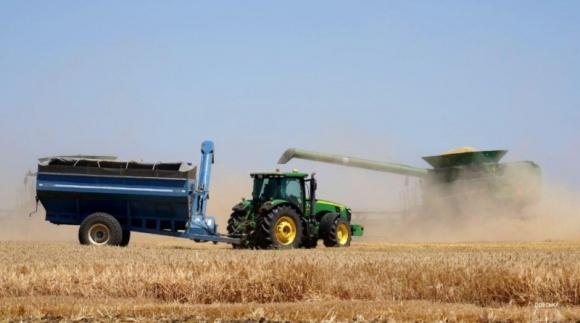 Аграрии Одесской области собрали наибольший вал зерна фото, иллюстрация