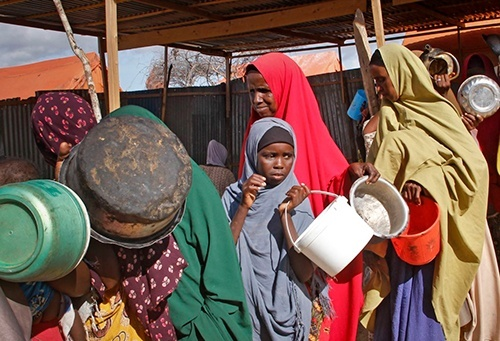 Более 800 миллионов людей в мире страдают от голода, - SIPRI фото, иллюстрация