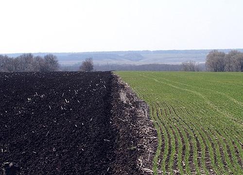 Україна не буде випробувальним земельним майданчиком, - Козаченко фото, ілюстрація