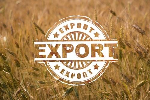 Официально: В 2018/2019 МГ Украина экспортировала рекордный объем зерновых, - 50.4 млн тонн фото, иллюстрация