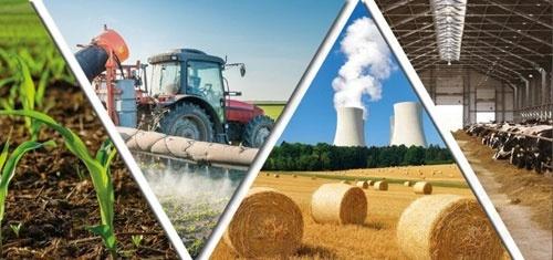 Сельское хозяйство остается одним из ключевых двигателей украинской экономики, - Ковалева фото, иллюстрация