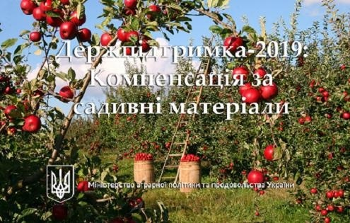 Держпідтримка-2019: Вже 114 млн грн. компенсації сплачено сільгоспвиробникам за придбаний садивний матеріал фото, ілюстрація
