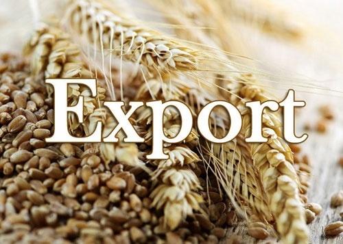 З початку 2019/20 МР з України експортовано майже 10 млн тон зерна фото, ілюстрація
