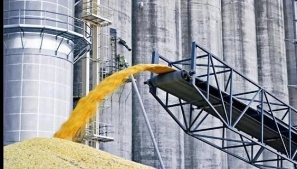На Івано-Франківщині СБУ викрила розкрадання зернових посадовцями держпідприємства  фото, ілюстрація