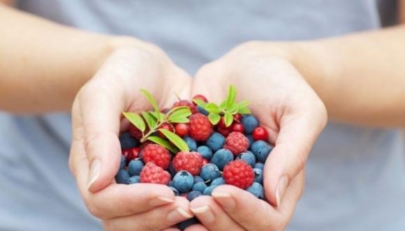 Експорт малини й ожини в минулому році зріс на 72% - Мінагро фото, ілюстрація