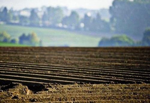 Эксперты рассказали, как вырастет цена на землю на старте реформы фото, иллюстрация