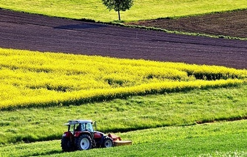 Чому старт ринку з продажу державної землі приречений на невдачу фото, ілюстрація