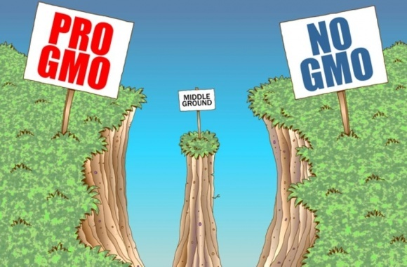 Германия настаивает: продукты с отредактированным геномом — это ГМО фото, иллюстрация