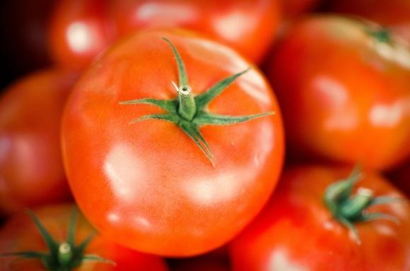 USAID объявляют конкурс проектов по созданию мощностей для переработки свежих ягод и овощей фото, иллюстрация