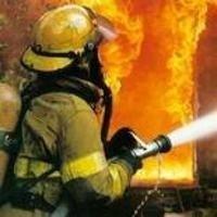 За 1,5 години пожежа перетворила на гриль 1000 курей фото, ілюстрація