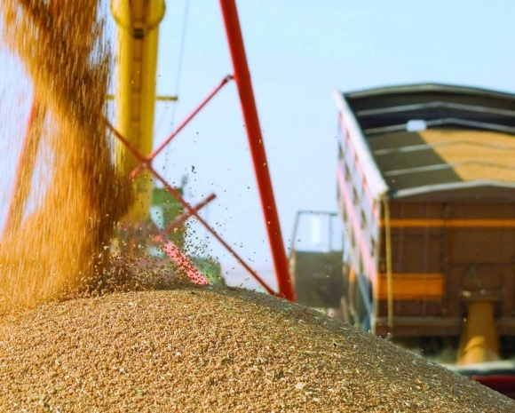 Аграрии уже намолотили более 11 млн тонн зерна нового урожая фото, иллюстрация