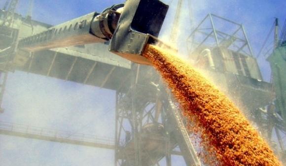 Orexim інвестує в розширення зернового терміналу в Миколаєві фото, ілюстрація