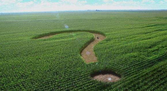 Зняття земельного мораторію додасть більше 1% зростання ВВП - експерт фото, ілюстрація