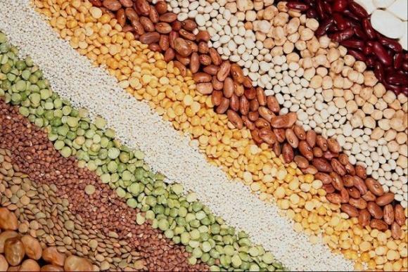 Отечественные ученые продают семена в 80 стран мира фото, иллюстрация
