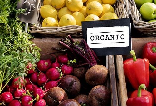 В Украине органическое производство развивается в 5 раз быстрее, чем в мире, – Трофимцева фото, иллюстрация