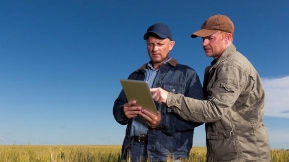 Зачем хозяйству нужны сайт и блог в соцсетях? фото, иллюстрация