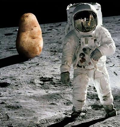 Китайці збираються вирощувати картоплю на зворотному боці Місяця фото, ілюстрація