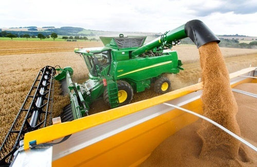 Врожай зерна в Україні досягне рекордних 71.8 млн тон, - Reuters фото, ілюстрація