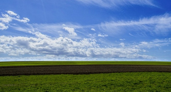 400 тис. грн від втрат сільськогосподарського виробництва направлено на розвиток земельних фондів Черкащини фото, ілюстрація