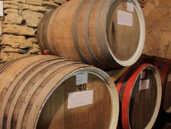 Херсонщина може стати виноробним регіоном, - голова Херсонської ОДА   фото, ілюстрація