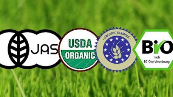 Польза органики поставлена под сомнение фото, иллюстрация