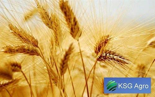 KSG Agro гасить борги, планує розвивати власний бренд та відкрити мережу фірмових магазинів фото, ілюстрація