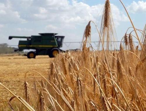 В Днепропетровской области загадочно умерли один за другим трое успешных фермеров фото, иллюстрация