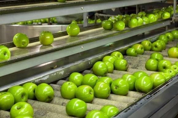 Укрсадпром призывает МинАПП присоединиться к урегулированию ситуации на рынке переработки фруктов фото, иллюстрация