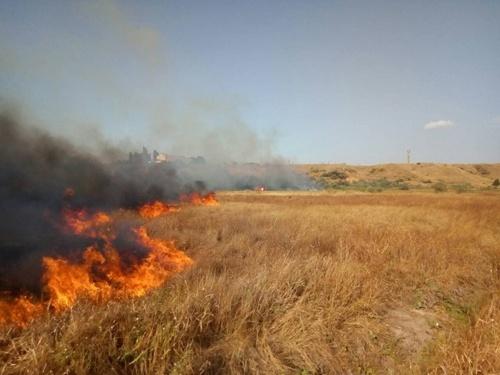 В Україні ледь не згоріли плантації двох ягідних господарств фото, ілюстрація
