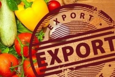 У 2017 році український аграрний експорт зріс на 16,3% фото, ілюстрація
