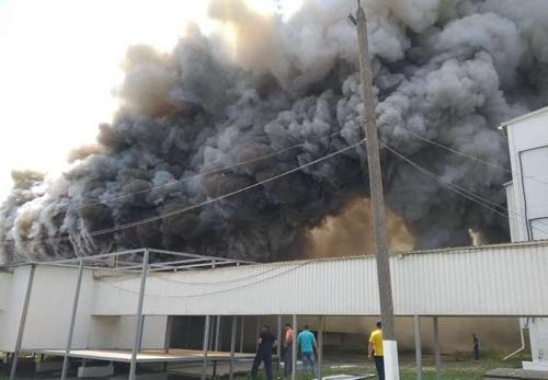 В Киевской области произошел пожар на птицефабрике фото, иллюстрация