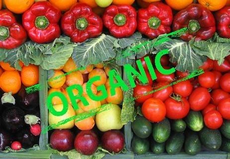 В Украине вступил в силу новый закон об органической продукции фото, иллюстрация