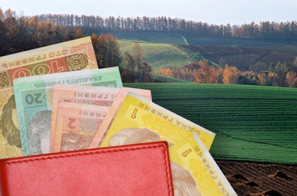 В Украине на аукционах продали земли на 115 млн грн фото, иллюстрация