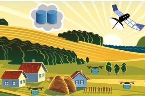 Топ-7 технологій точного агробізнесу фото, ілюстрація