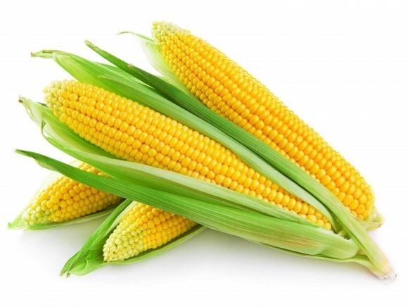 Аграрний напрямок «Епіцентр К» отримав рекордну урожайність кукурузи фото, ілюстрація