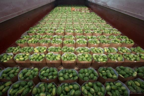 Из-за  высокой цены отправка арбузов из Херсона в Киев отложена на неделю фото, иллюстрация