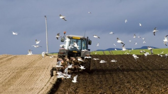 Владельцы «Эпицентра» инвестировали в агробизнес $150 млн фото, иллюстрация