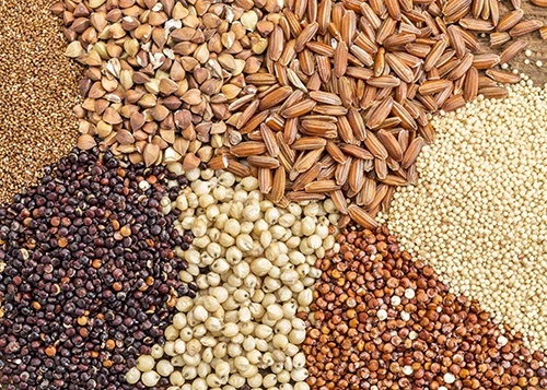 Уменьшение государственной поддержки отечественной селекции будет способствовать экспансии зарубежных производителей семян, которое угрожает продовольственной безопасности Украины, - Александр Захарчук фото, иллюстрация