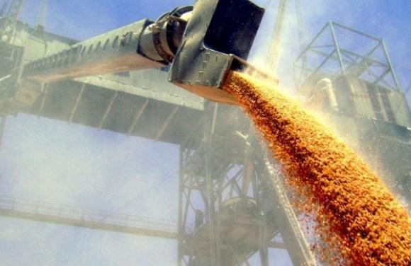 АМПУ: В портах Украины в этом году запустятся три зерновых терминала фото, иллюстрация