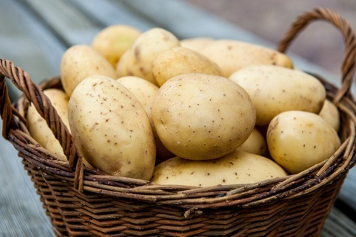 Українська картопля від початку зими подорожчала в два рази фото, ілюстрація