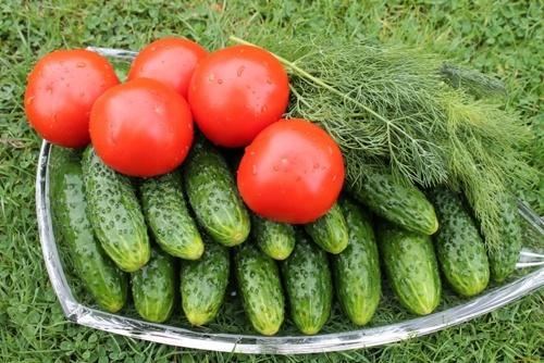 Овочі на Великдень в 2019 році обійдуться українцям в три рази дорожче фото, ілюстрація