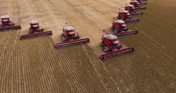 Три несчастья. Какие проблемы больше всего угрожают украинскому агробизнесу в начале 2020 года фото, иллюстрация