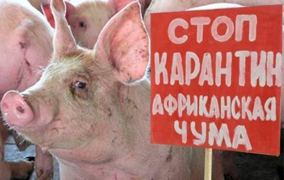 Эксперты поддержали концепт госпрограммы преодоления АЧС в Украине фото, иллюстрация