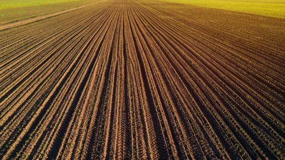 На Тернопільщині прокуратура припинила незаконне використання фермерським господарством 520 га землі навчального закладу фото, ілюстрація
