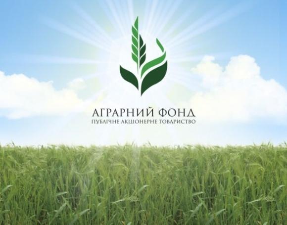 Аграрний фонд починає форвардні закупівлі зерна врожаю-2021 фото, ілюстрація