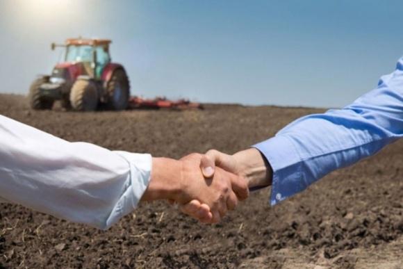 В ВР подан проект обновленного Закона «Об аграрных расписках» фото, иллюстрация