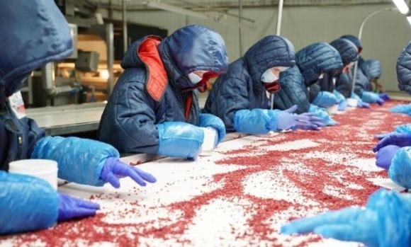 На заводі «Аграна Фрут» у Вінниці відкриють новий цех фото, ілюстрація