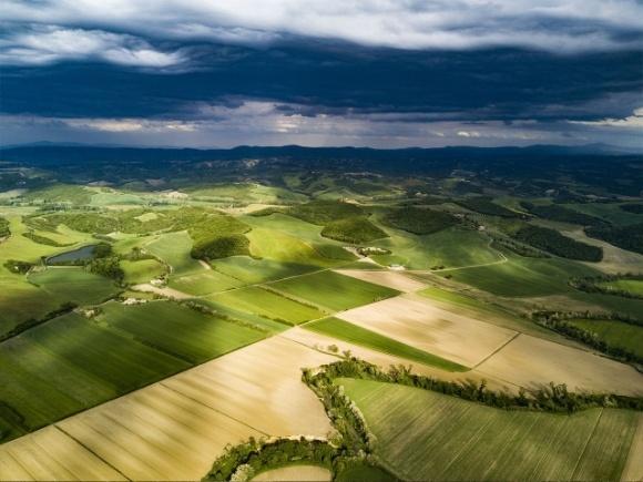Названы ведущие дистрибьюторы агросектора Украины по чистому доходу фото, иллюстрация