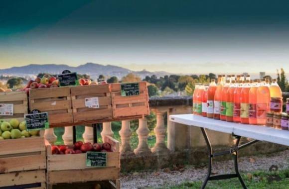 Толчком для развития бизнеса в Винницкой области будет создание аграрного кластера фото, иллюстрация