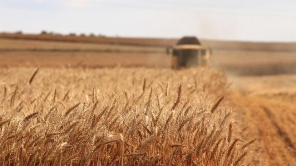 Нардепи не підтримали законопроєкт про створення фонду гарантування кредитів у сільському господарстві фото, ілюстрація